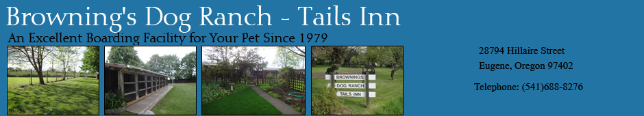 Browning S Dog Ranch Tails Inn